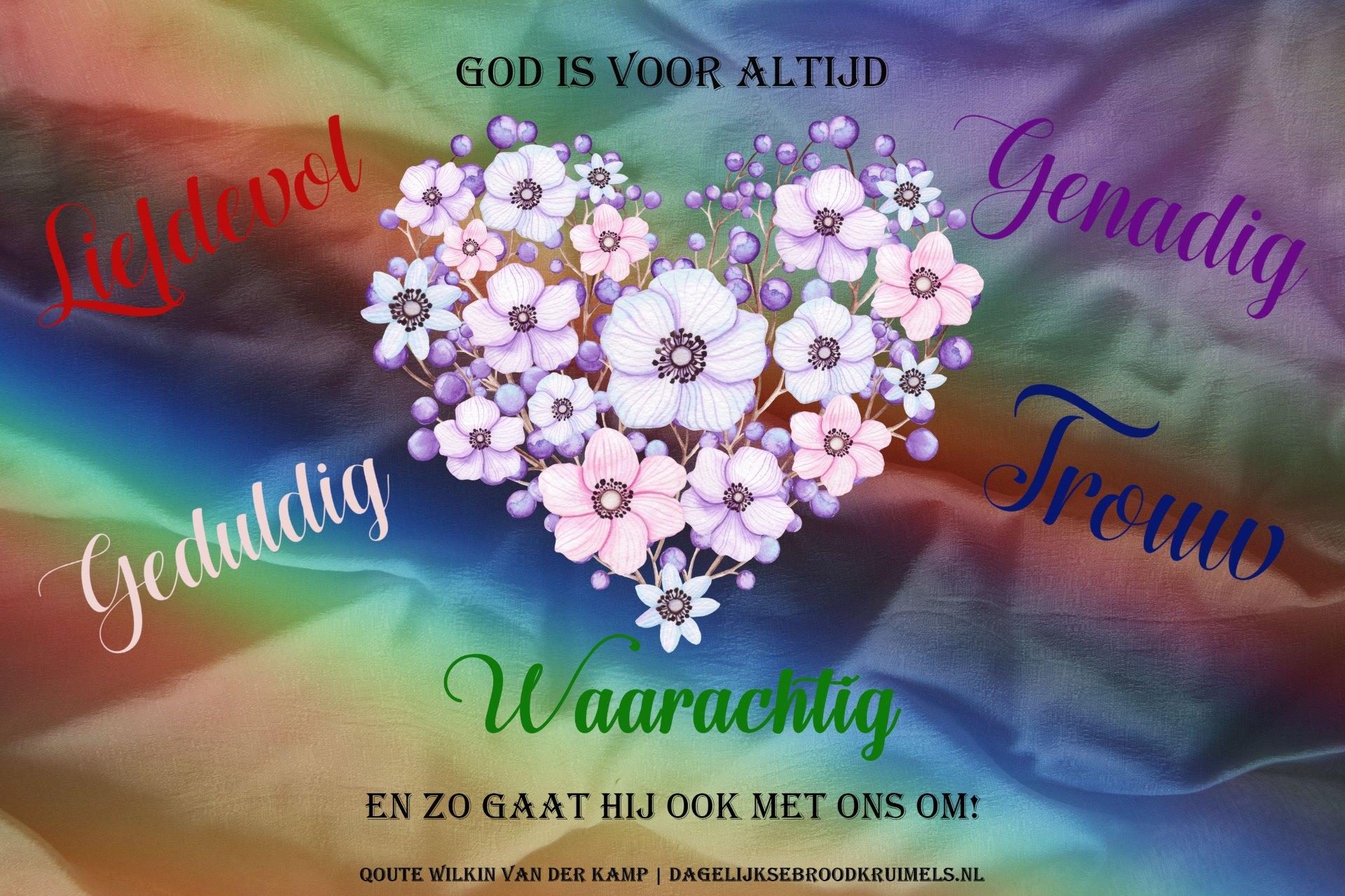 Qoute Wilkin van der Kamp