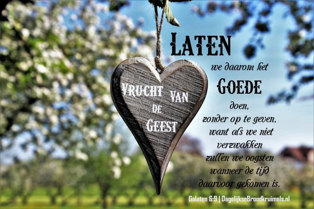 Galaten 6 vers 9