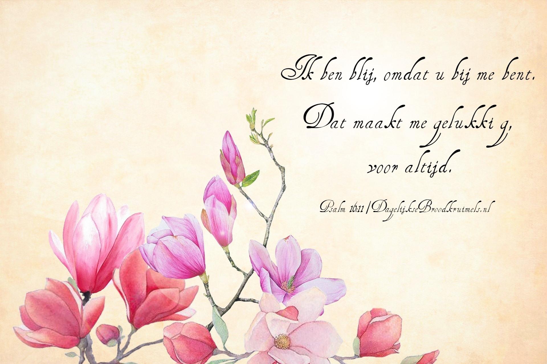 Psalm 16 vers 11