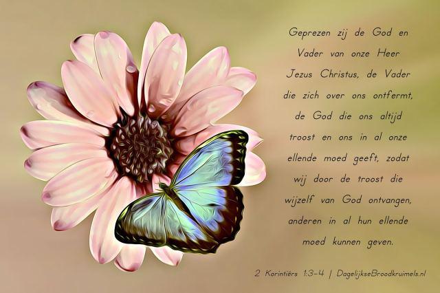 2 Korintiërs 1 vers 3-4