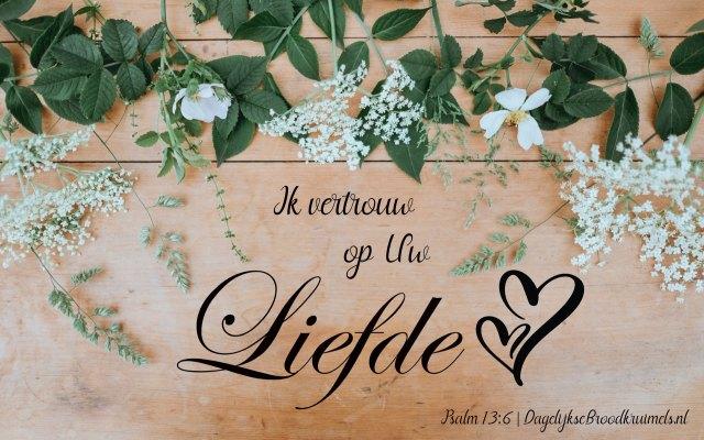 Psalm 13 vers 6